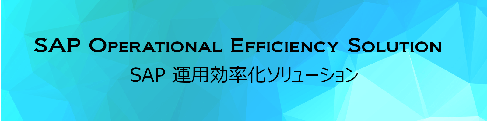 SAP operational efficiency solution -SAP運用効率化ソリューション-